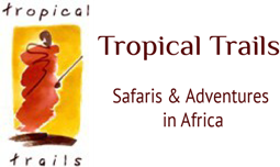 Tropical Trails